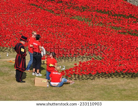 LONDON - AUGUST 7. Yeoman and volunteers installing ceramic poppies on August 7, 2014 commemorating the 888,246 First World War British and colonial military deaths, located at the Tower of London. - stock photo