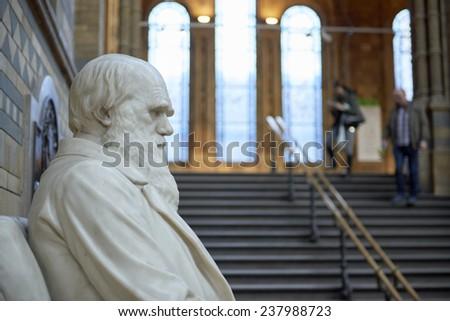 LONDON, UK - DECEMBER 11: Profile of Charles Darwin statue at the Natural History Museum. December 11, 2014 in London. - stock photo