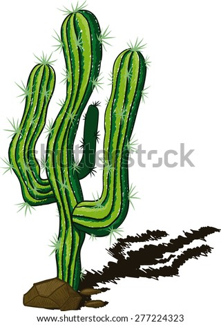 lone cactus among the rocks and rtbrasyvayuschy shadow drawn a sketch - stock photo