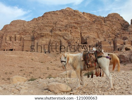 lone horse in front of Urn, Silk, Corinthian tombs in city Petra, Jordan - stock photo