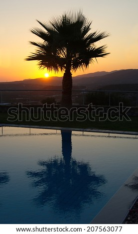 Lone Palm Silhouette reflecting in a pool on a summer vacation.  The sun is rising in the background over the Cretan mountains in Malia, Crete near Heraklion, Greece - stock photo
