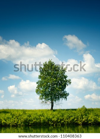 Lone tree at the bank of the calm river - stock photo