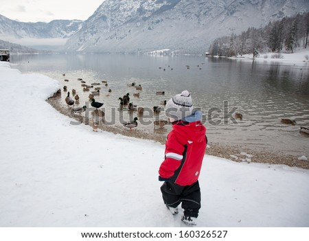 lonely baby boy by the lake admiring ducks in winter - stock photo