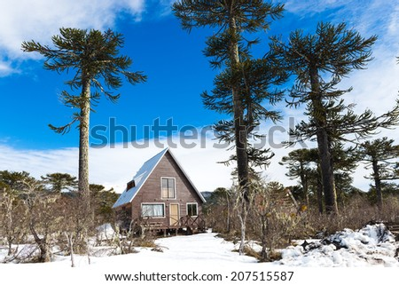 Lonely cabin at the mountains - stock photo