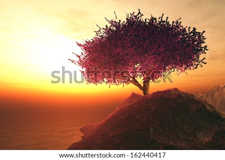Lonely Cherry Blossoming Tree in the Rocks on the shore of endless ocean in the sunset - stock photo