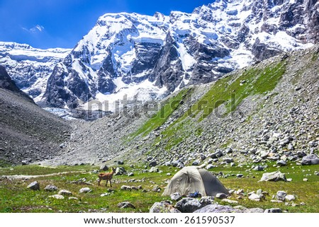 Lonely climbers camp on a background of very high snowy mountains. Picture was taken during a trekking hike in the stunning and majestic Caucasus mountains, Bezengi region, Kabardino-Balkaria, Russia - stock photo