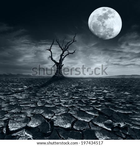 Lonely dead tree at full moon night under dramatic cloudy sky at drought cracked desert landscape - stock photo
