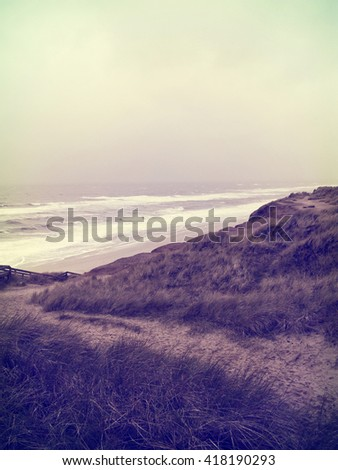 Lonely footpath through a beach dune landscape on Sylt. Beach scene of Sylt. - stock photo