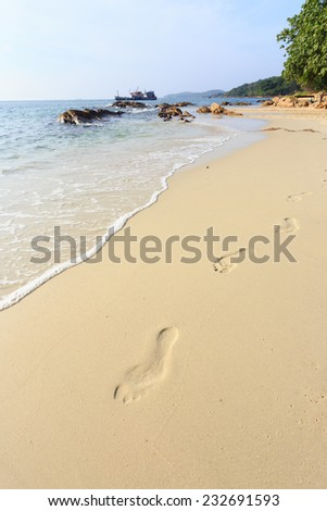 Lonely footprints on tropical beach - stock photo
