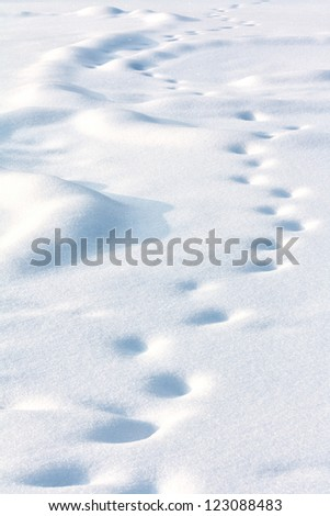 Lonely human drifted tracks on white snow in winter evening - stock photo