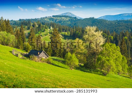 Lonely rustic wooden house in a spring Carpathian mountain valley. Spring time - stock photo