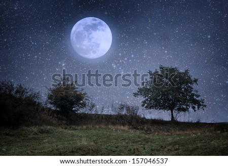 Lonely tree and moon - stock photo