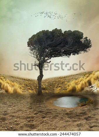 lonely tree in a deserted fantasy landscape - stock photo