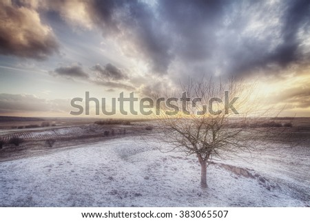lonely tree on the hill with dark clouds in winter time, snowstorm - stock photo