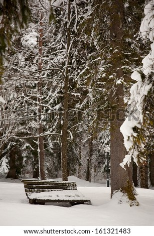 lonely wooden bench covered with snow deep in the forest - stock photo