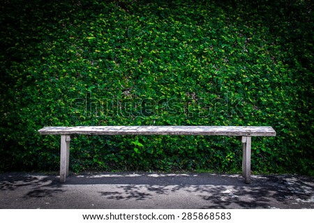 Lonely wooden bench in the park and ivy wall - stock photo