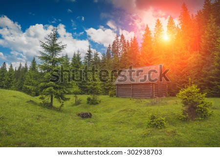 Lonely wooden house in the pine forest of Carpathians. Ukraine, Europe - stock photo
