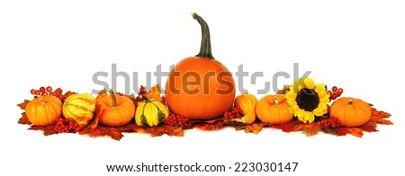 Long autumn border with pumpkins, leaves and flowers over a white background - stock photo