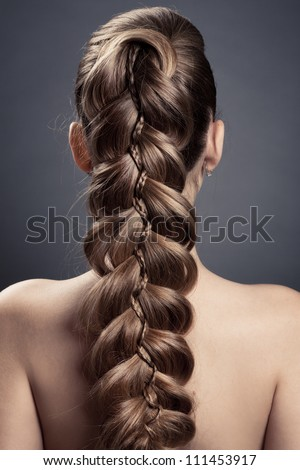 Long Brown Hair. Back View - stock photo