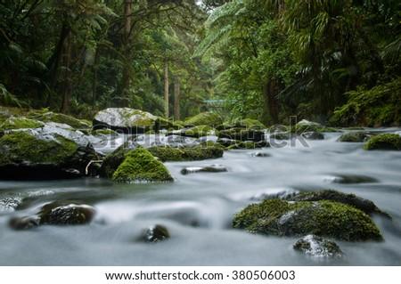 Long exposure of Whangarei Waterfalls New Zealand - stock photo