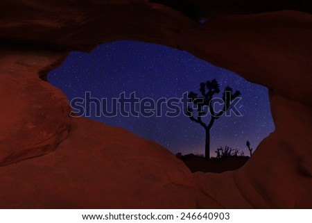 Long Exposure Star Trails In Joshua Tree National Park - stock photo