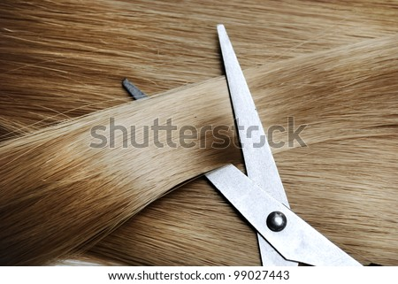 Long healthy blond hair and professional scissors - stock photo