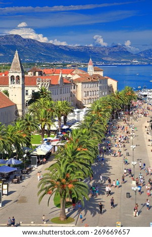 Long line of palm trees near the harbor and town of Trogir, Croatia - stock photo