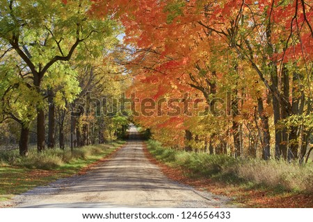 Long Road Home -- A dirt road during the fall color season at Sleeping Bear Dunes National Lakeshore. - stock photo