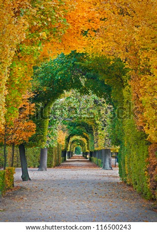 long road in autumn park - stock photo