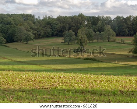 Long Shadows - stock photo