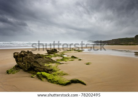 Lonly beach and green and black stones - stock photo