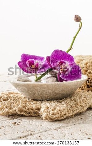 loofah glove with orchid flowers for beauty - stock photo