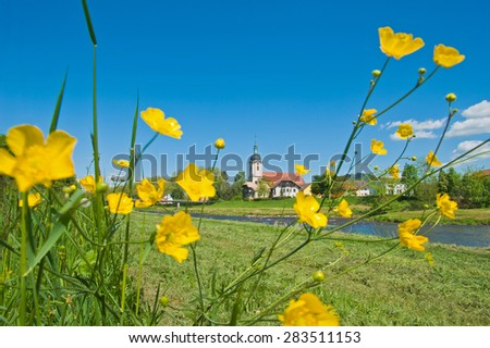 Look at the parish church of Saint Laurentius with buttercups and the river Murg in Bad Rotenfels, Black Forest, Baden-Wuerttemberg, Germany, Europe - stock photo