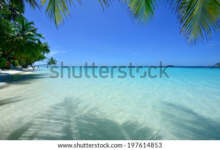 Look tropical beach under palm trees - stock photo