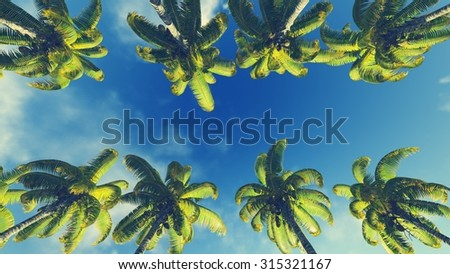 Look up at coconut palms against bright sky at daytime - stock photo