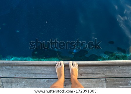 looking at the barrier reef - stock photo