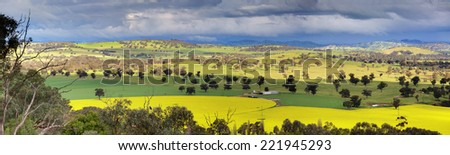 Looking down over fields of canola, wheat  and grazing pastures with menacing storm clouds looming overhead and offering large downpours of heavy rain intermittently.  NSW,Australia  Shot at 1250 iso. - stock photo
