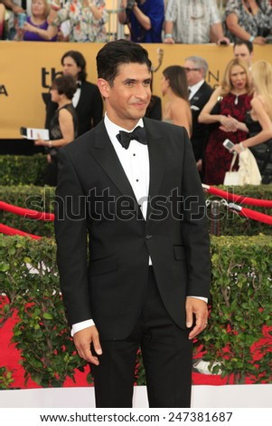 LOS ANGELES - JAN 25:  Raza Jaffrey at the 2015 Screen Actor Guild Awards at the Shrine Auditorium on January 25, 2015 in Los Angeles, CA - stock photo