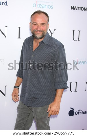 """LOS ANGELES - JUN 24:  David DeLuise at the """"Unity"""" Documentary World Premeire at the Director's Guild of America on June 24, 2015 in Los Angeles, CA - stock photo"""