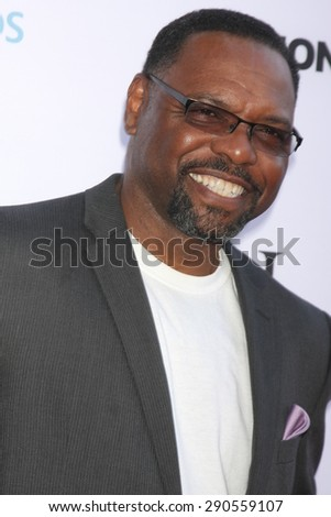 """LOS ANGELES - JUN 24:  Petri Hawkins Byrd at the """"Unity"""" Documentary World Premeire at the Director's Guild of America on June 24, 2015 in Los Angeles, CA - stock photo"""