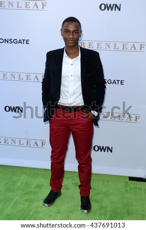LOS ANGELES - JUN 15:  Zachary S. Williams at the Greenleaf OWN Series Premiere at the The Lot on June 15, 2016 in West Hollywood, CA - stock photo