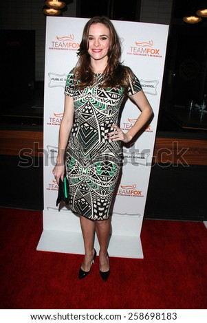 LOS ANGELES - MAR 7:  Danielle Panabaker at the Raising The Bar To End Parkinsons Event at the Public School 818 on March 7, 2015 in Sherman Oaks, CA - stock photo