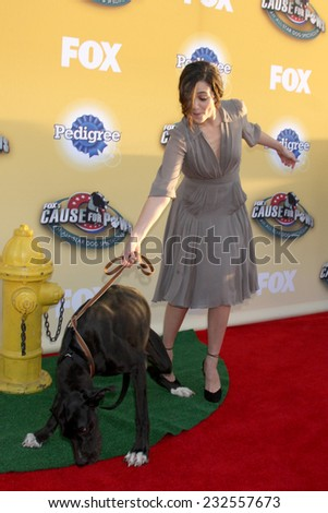 "LOS ANGELES - NOV 22:  Emmy Rossum at the FOX's ""Cause for Paws:  All-Star Dog Spectacular"" at the Barker Hanger on November 22, 2014 in Santa Monica, CA - stock photo"