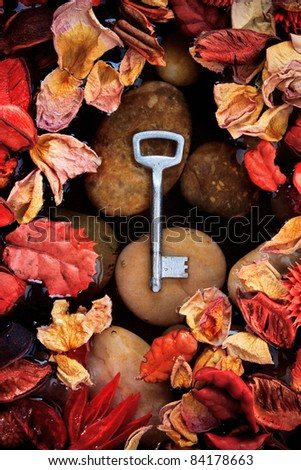 Lost key int the water pond, still life. - stock photo