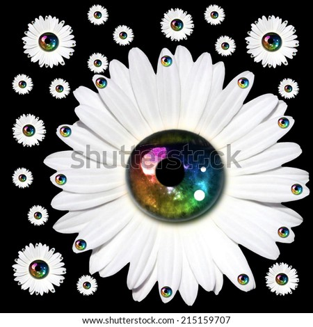 Lot of flowers on a black background - stock photo