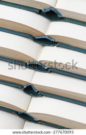 Lot of open books. - stock photo
