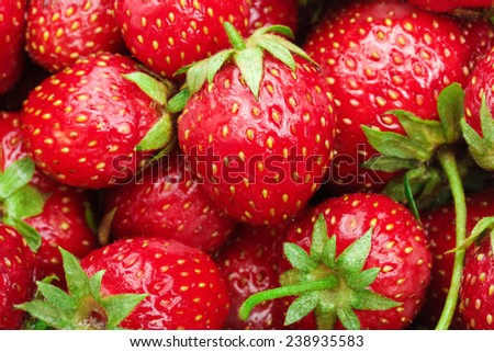 Lot of red ripe strawberries - food background - stock photo