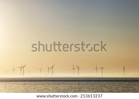 lot of wind turbines at sunrise in the dutch province of Flevoland - stock photo