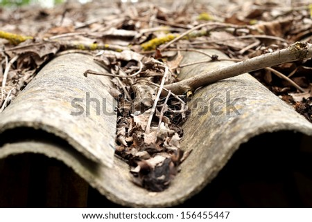 Lots of autumn leaves on a roof - stock photo