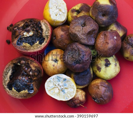Lots of roten fruits. Apples, lemon, garnet molden dark and dried up. Environment conversion concept - stock photo